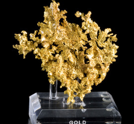 GOLD-EAGLESNEST-CALIFORNIA-9.5CM-JB085-1- Custom Bases - Natural Fine Art
